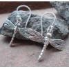 Zilveren Oorbellen Libélula