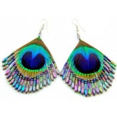 Iridescent Peacock Earrings
